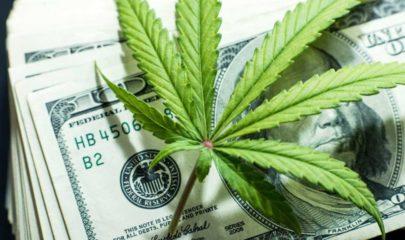 Wall Street Bank Shuts Down US Marijuana Stock Spree